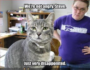 We're not angry, Steve.