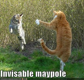 Invisable maypole