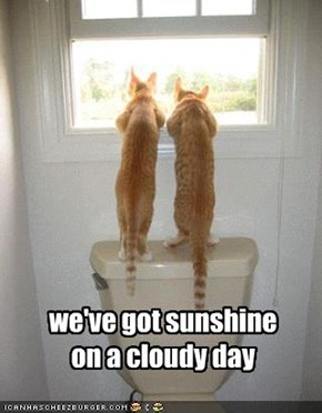 we've got sunshine on a cloudy day