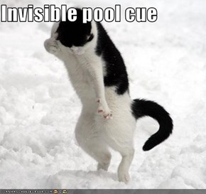 Invisible pool cue