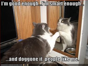 I'm good enough...I'm smart enough...  ...and doggone it, people like me.
