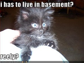 i has to live in basement?  reely?