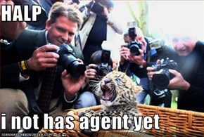 HALP  i not has agent yet