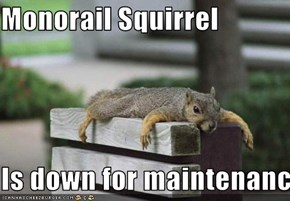 Monorail Squirrel  Is down for maintenance