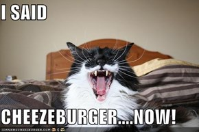 I SAID  CHEEZEBURGER....NOW!