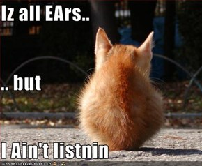 Iz all EArs.. .. but I Ain't listnin