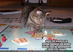 future CEO practices by playing monopoly and getting bailout from the government...  I mean Free Parking
