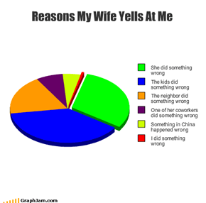 Reasons My Wife Yells At Me