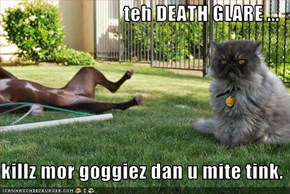 teh DEATH GLARE ...  killz mor goggiez dan u mite tink.