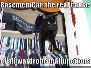 BasementCat: the real cause  of all wardrobe malfunctions