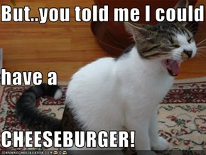 But..you told me I could have a CHEESEBURGER!
