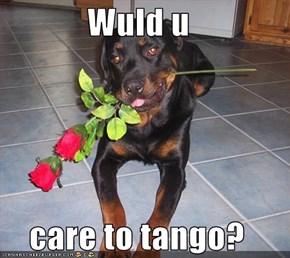 Wuld u  care to tango?