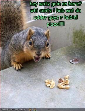 hey watz goin on here? whi cantz i hab wat da udder guyz r habin! pizza!!!!!