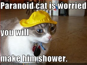 Paranoid cat is worried you will make him shower.