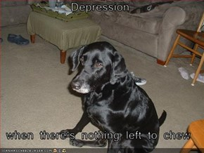 Depression  when there's nothing left to chew