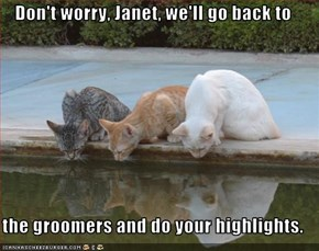 Don't worry, Janet, we'll go back to  the groomers and do your highlights.