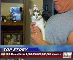 TOP STORY  - Bob the cat turns 1,000,000,000,000,000 seconds