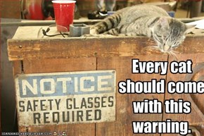 Every cat should come with this warning.