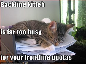 Backline kitteh is far too busy for your frontline quotas
