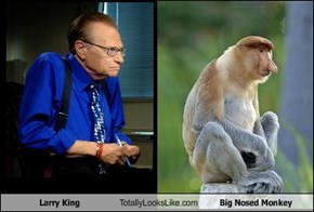 Larry King Totally Looks Like Big Nosed Monkey