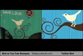 Bird on Tea Tree Shampoo Totally Looks Like Twitter Bird