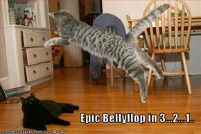 Epic Bellyflop in 3...2...1..