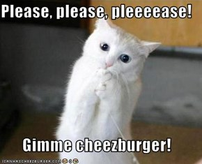 Please, please, pleeeease!  Gimme cheezburger!