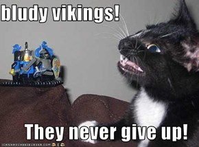 bludy vikings!  They never give up!