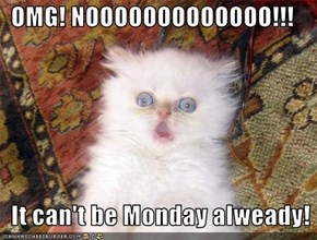 OMG! NOOOOOOOOOOOOO!!!    It can't be Monday alweady!