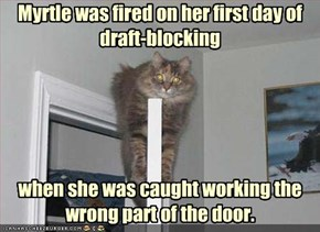 Myrtle was fired on her first day of draft-blocking
