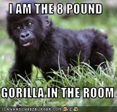 I AM THE 8 POUND  GORILLA IN THE ROOM