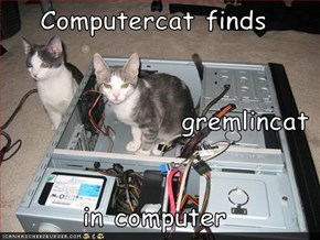 Computercat finds  gremlincat  in computer