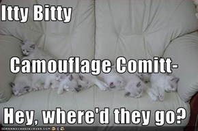 Itty Bitty Camouflage Comitt- Hey, where'd they go?