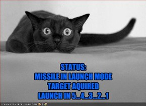 STATUS:  MISSILE IN LAUNCH MODE TARGET AQUIRED LAUNCH IN 5...4...3...2...1