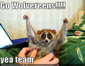Go Wolvereens!!!!  yea team