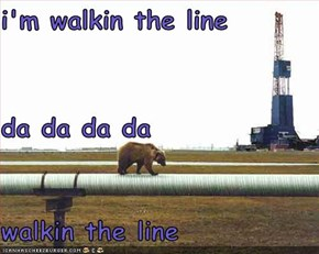 i'm walkin the line da da da da walkin the line