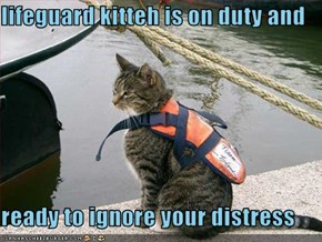 lifeguard kitteh is on duty and  ready to ignore your distress