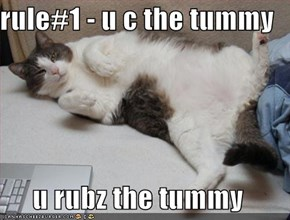 rule#1 - u c the tummy  u rubz the tummy