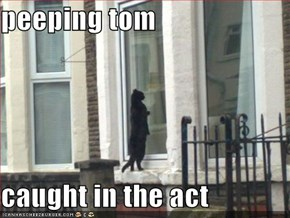 peeping tom  caught in the act