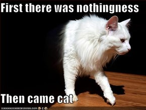First there was nothingness  Then came cat