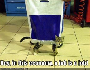 Hey, in this economy, a job is a job!