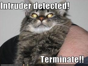Intruder detected!  Terminate!!