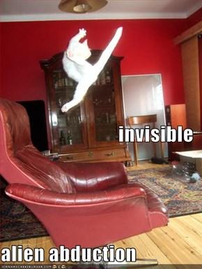 invisible alien abduction