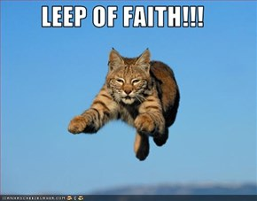 LEEP OF FAITH!!!