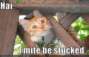 Hai  I mite be stucked