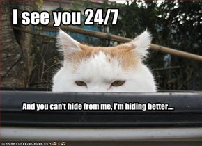 I see you 24/7