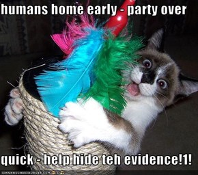 humans home early - party over  quick - help hide teh evidence!1!
