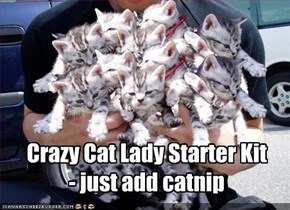 Crazy Cat Lady Starter Kit - just add catnip