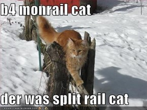 b4 monrail cat  der was split rail cat