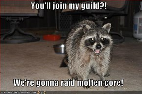 You'll join my guild?!  We're gonna raid molten core!